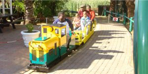 Stimela Train